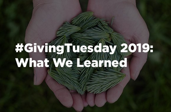 #GivingTuesday 2019: What We Learned